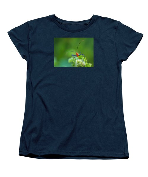 Straight In The Eye Look  Women's T-Shirt (Standard Cut) by Tom Claud
