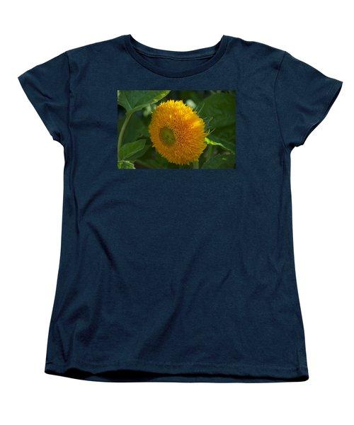 Sun Women's T-Shirt (Standard Cut) by Joseph Yarbrough