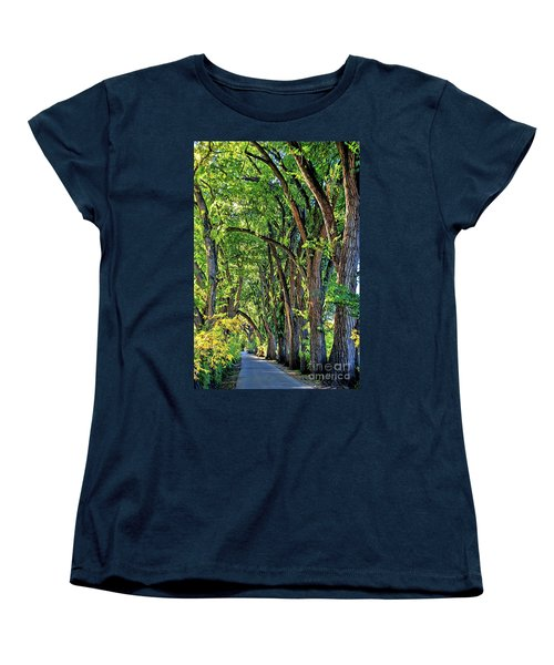 Sunlit Path Women's T-Shirt (Standard Cut) by Gina Savage
