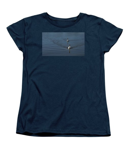 Swans On Blue Women's T-Shirt (Standard Cut) by Charles Kraus