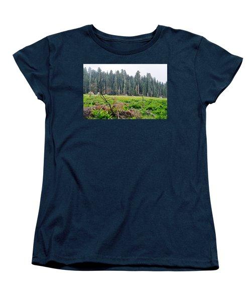 Women's T-Shirt (Standard Cut) featuring the photograph Tharps Log Meadow by Kyle Hanson