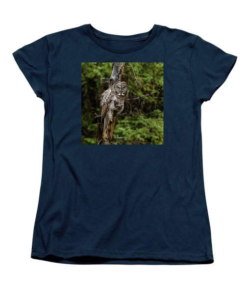 The Captivating Great Grey Owl Women's T-Shirt (Standard Cut) by Yeates Photography