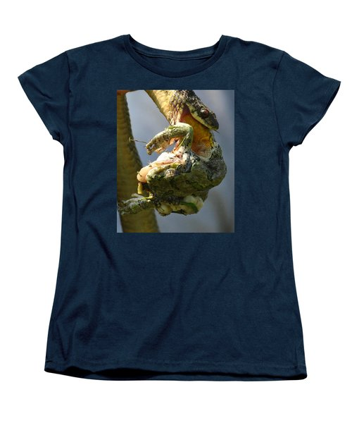 The Serpent And The Frog Women's T-Shirt (Standard Cut) by Lisa DiFruscio