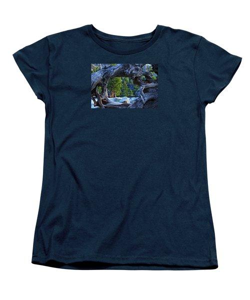 Through The Looking Glass Women's T-Shirt (Standard Cut)