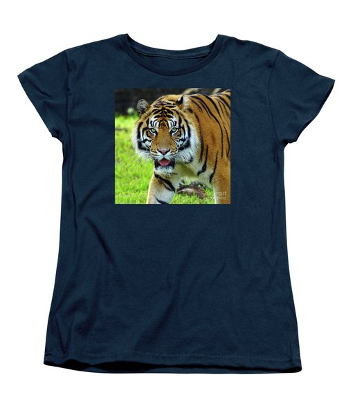 Tiger The Stare Women's T-Shirt (Standard Cut) by Larry Nieland
