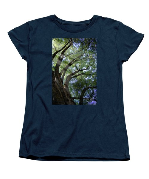 Women's T-Shirt (Standard Cut) featuring the photograph Tree Rays by Brian Jones