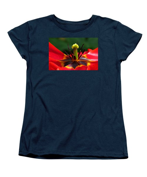 Tulip Stamen Women's T-Shirt (Standard Cut) by John Topman