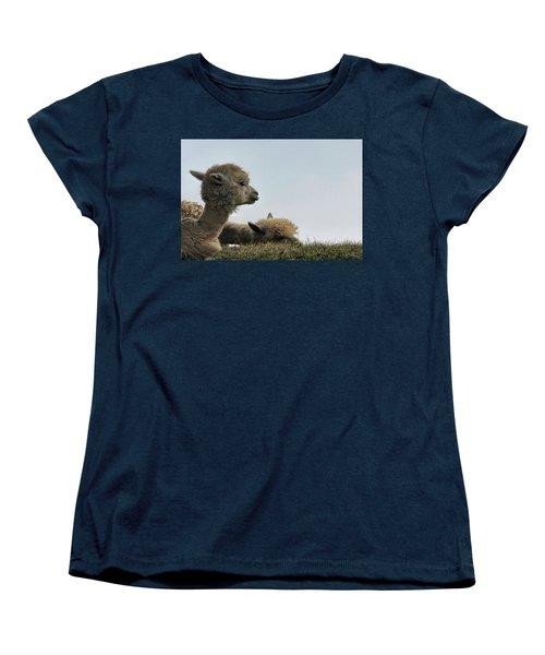 Two Alpaca Women's T-Shirt (Standard Cut) by Pat Cook