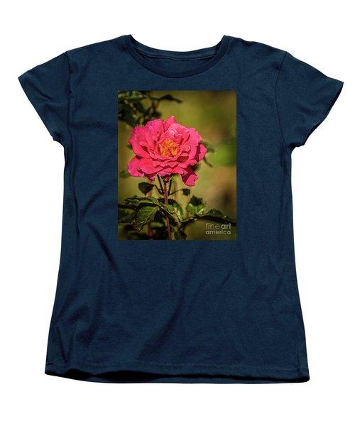 Women's T-Shirt (Standard Cut) featuring the photograph Vignetted  Rose by Robert Bales