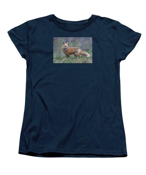 Women's T-Shirt (Standard Cut) featuring the photograph Watchful by Gary Lengyel