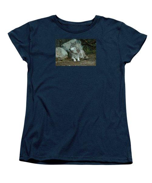 Watchful Wolf Women's T-Shirt (Standard Cut) by Sandra Updyke