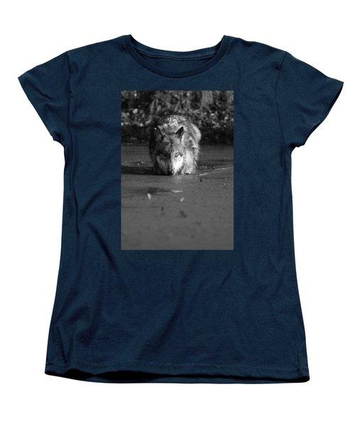 Water Wolf I Women's T-Shirt (Standard Cut) by Shari Jardina