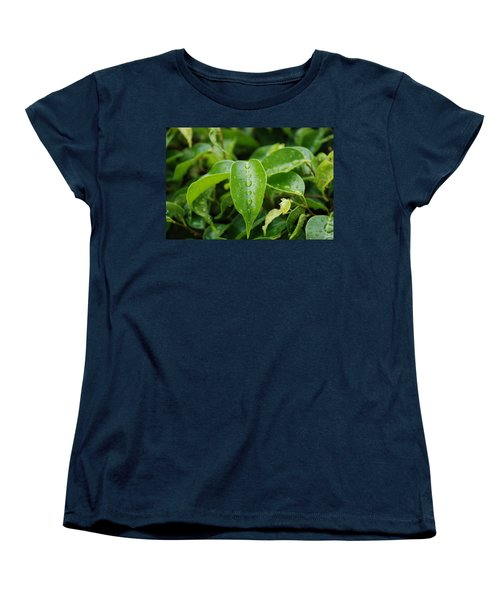 Women's T-Shirt (Standard Cut) featuring the photograph Wet Bushes by Rob Hans
