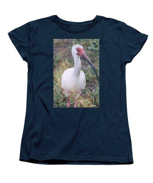 White Ibis In The Morning Light  Women's T-Shirt (Standard Cut) by Saija  Lehtonen