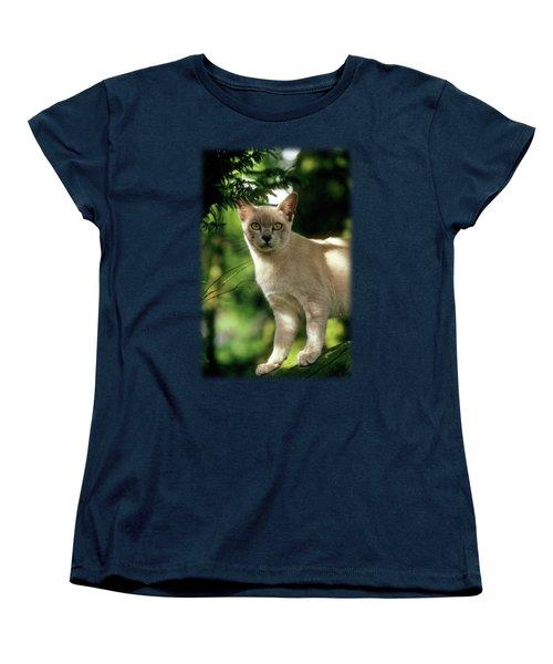 Wilham Women's T-Shirt (Standard Cut) by Jon Delorme