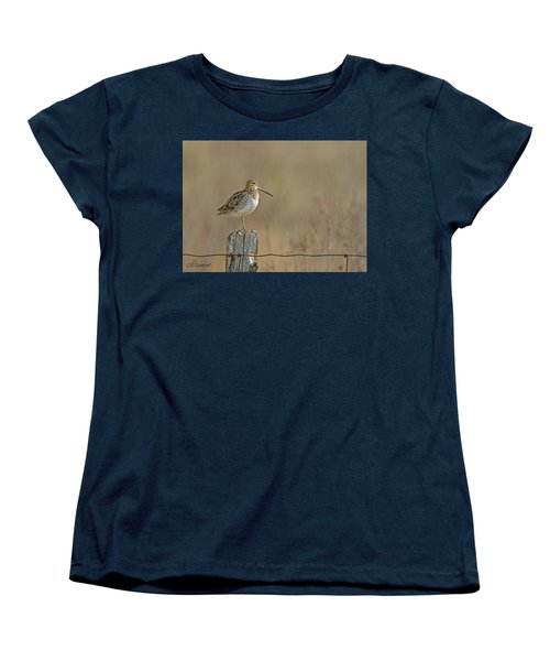 Wilson's Snipe On A Post Women's T-Shirt (Standard Cut) by CR Courson