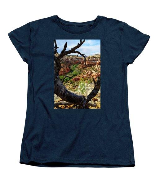 Women's T-Shirt (Standard Cut) featuring the photograph Window by Chad Dutson