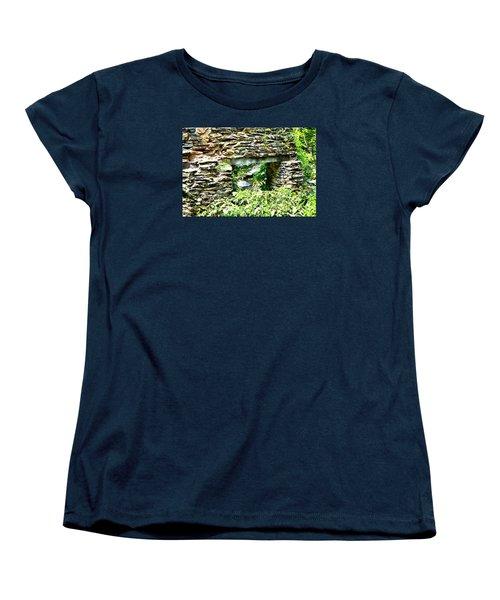 Window View Of Sope Creek Women's T-Shirt (Standard Cut) by James Potts