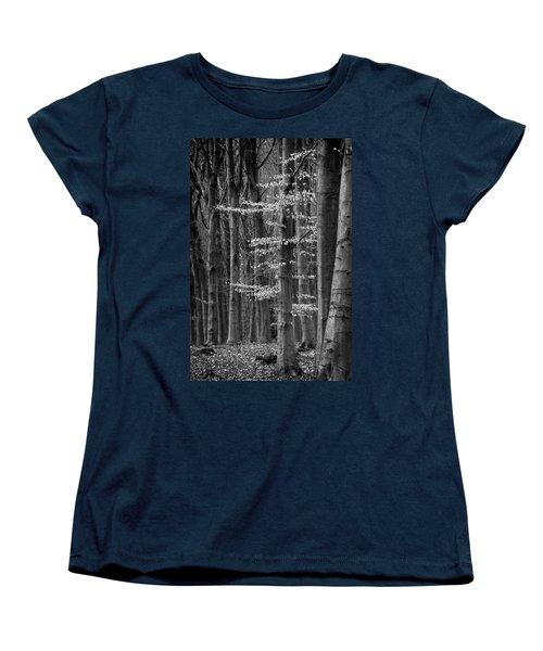 Winter Beech Women's T-Shirt (Standard Cut) by Inge Riis McDonald