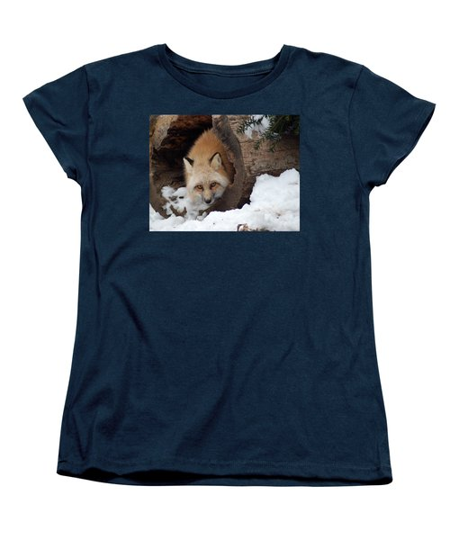 Women's T-Shirt (Standard Cut) featuring the photograph Winter Fox by Richard Bryce and Family