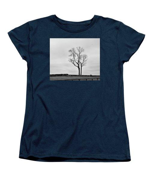 Winter Trees And Fences Women's T-Shirt (Standard Cut) by Nancy De Flon
