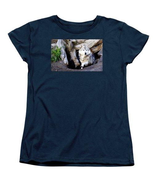 Wolf Den 1 Women's T-Shirt (Standard Cut) by Marty Koch
