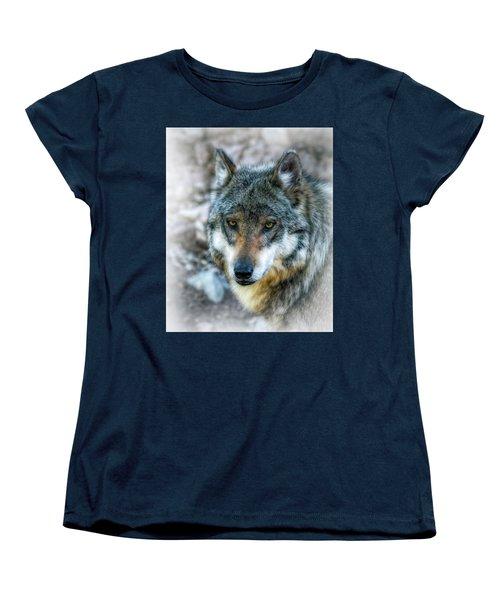Wolf Gaze Women's T-Shirt (Standard Cut) by Elaine Malott