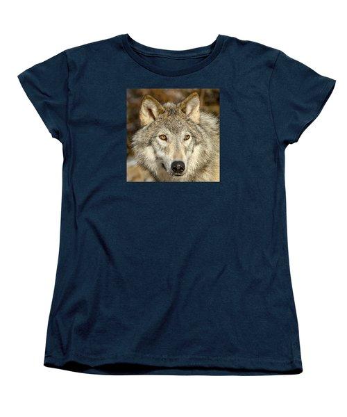 Wolf Portrait Women's T-Shirt (Standard Cut) by Jack Bell