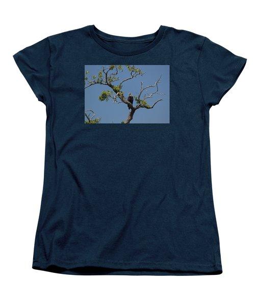 Yawkey Wildlife Reguge - American Bald Eagle Women's T-Shirt (Standard Cut) by Suzanne Gaff