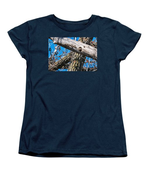 Women's T-Shirt (Standard Cut) featuring the photograph Yellow-shafted Northern Flicker Nest Building by Edward Peterson