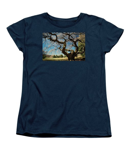 Yoshino Cherry Women's T-Shirt (Standard Cut) by Dana Sohr