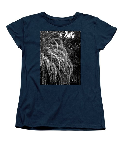 Women's T-Shirt (Standard Cut) featuring the photograph Zebra Palm by DigiArt Diaries by Vicky B Fuller