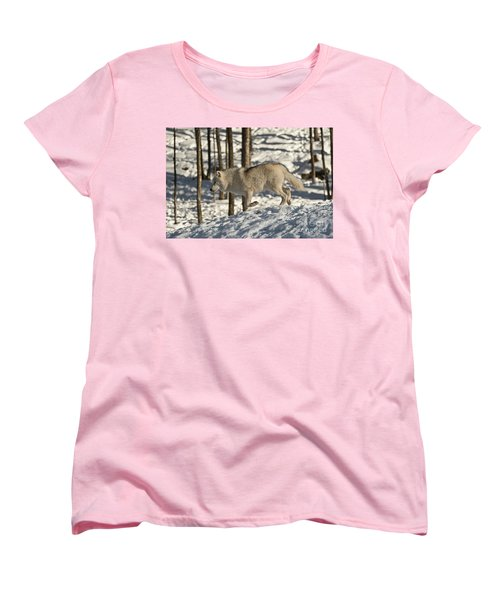 Women's T-Shirt (Standard Cut) featuring the photograph Arctic Wolf by Wolves Only
