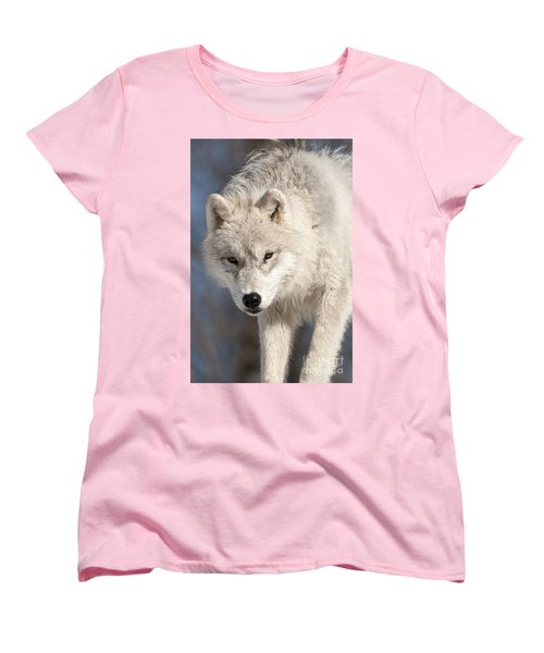 Arctic Wolf Pup Women's T-Shirt (Standard Cut) by Wolves Only