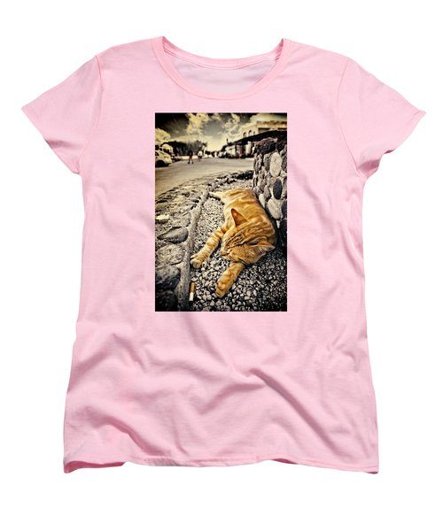 Alley Cat Siesta In Grunge Women's T-Shirt (Standard Cut) by Meirion Matthias