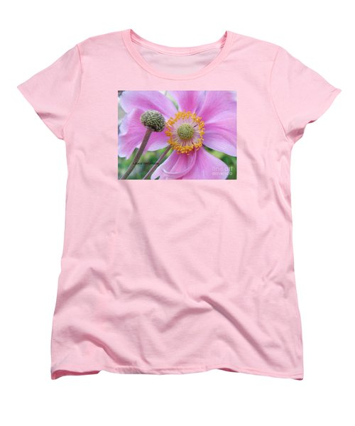 Blossom Women's T-Shirt (Standard Cut) by Lainie Wrightson