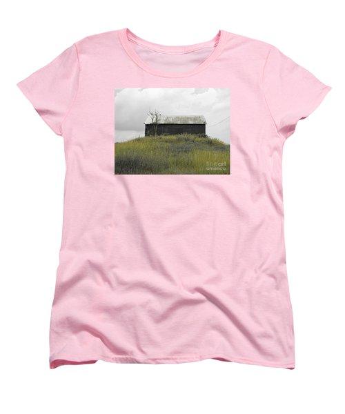 Buzzards Women's T-Shirt (Standard Cut) by Michael Krek