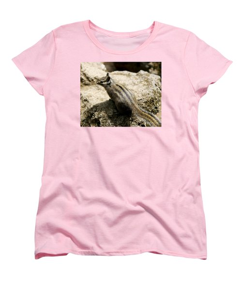 Chipmunk On A Rock Women's T-Shirt (Standard Cut) by Belinda Greb