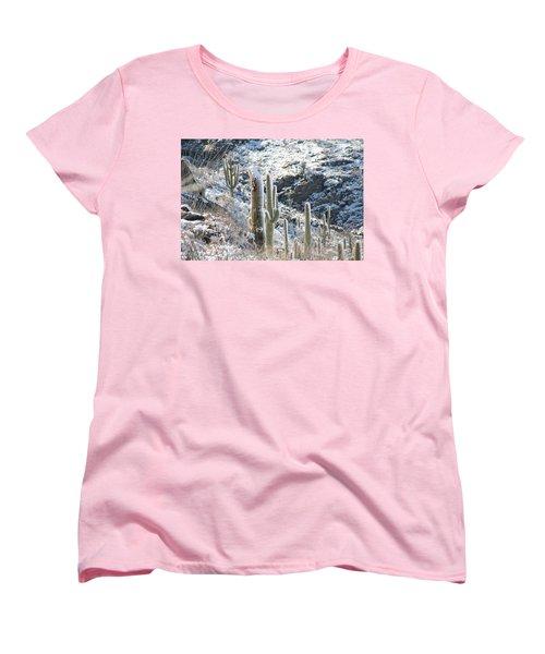 Cold Saguaros Women's T-Shirt (Standard Cut) by David S Reynolds