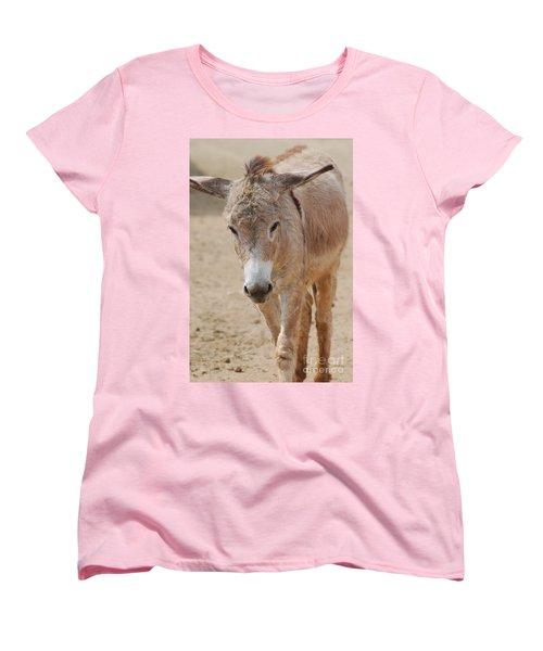 Donkey Women's T-Shirt (Standard Cut) by DejaVu Designs