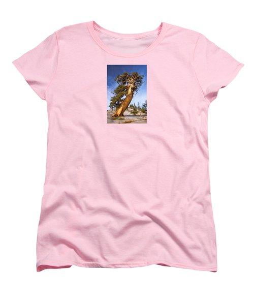 Endurance Women's T-Shirt (Standard Cut) by Alice Cahill