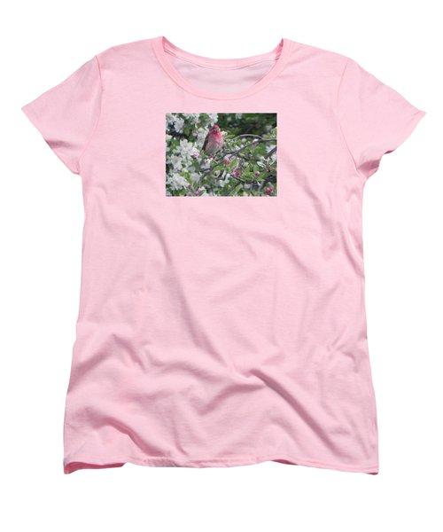 Finch In Apple Tree Women's T-Shirt (Standard Cut) by Christine Lathrop