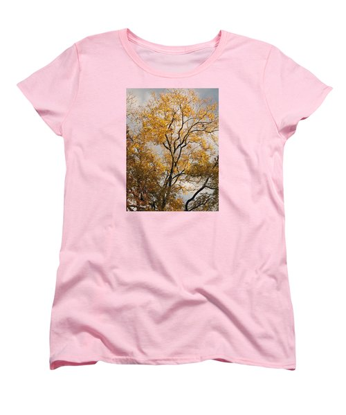 First Day Of Winter 2 Women's T-Shirt (Standard Cut) by Connie Fox