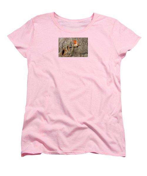 Flicker Flight Women's T-Shirt (Standard Cut) by Alice Cahill