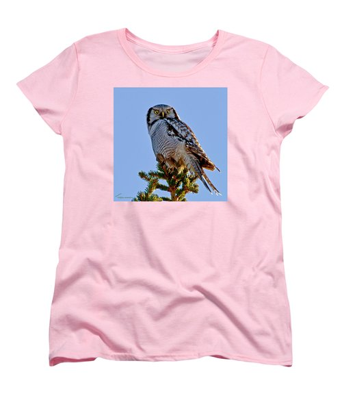 Hawk Owl Square Women's T-Shirt (Standard Cut) by Torbjorn Swenelius