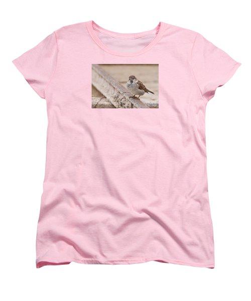 House Sparrow Women's T-Shirt (Standard Cut) by Simona Ghidini