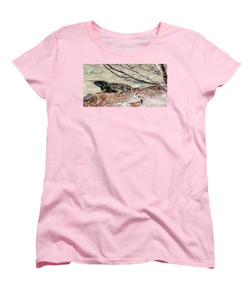 Women's T-Shirt (Standard Cut) featuring the photograph Iguana Iguana by Amar Sheow