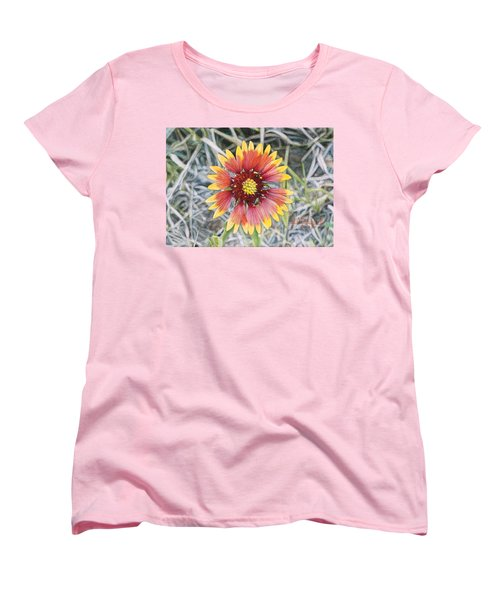 Indian Blanket Women's T-Shirt (Standard Cut) by Joshua Martin