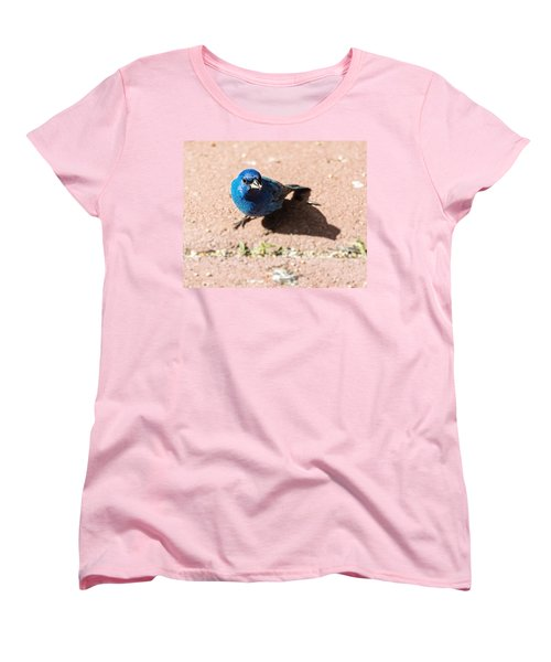 Indigo Bunting Women's T-Shirt (Standard Cut) by Jon Woodhams