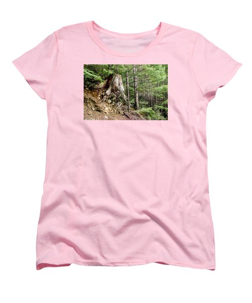 Just Hanging On Old Growth Forest Stump Women's T-Shirt (Standard Cut) by Roxy Hurtubise
